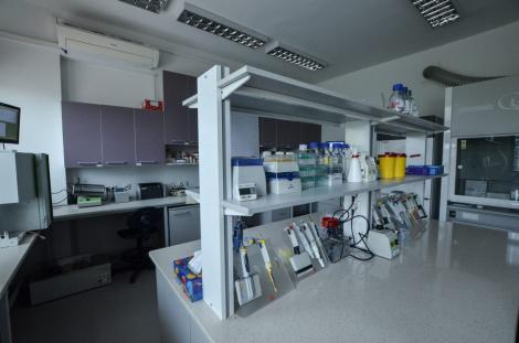Photo no.23 (30)Wydział Farmaceutyczny UJ, źródło: farmacja.cm.uj.edu.pl