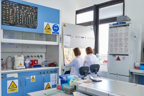 Photo no.11 (30)Wydział Farmaceutyczny UJ, źródło: farmacja.cm.uj.edu.pl