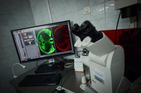 Photo no.25 (30)Wydział Farmaceutyczny UJ, źródło: farmacja.cm.uj.edu.pl